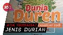 Dunia Duren untuk Para Pencinta Durian