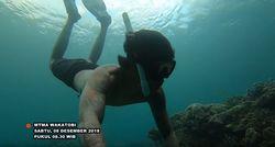 Ikuti MTMA Menjelajah Keindahan Bawah Laut Wakatobi