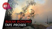 Jokowi Bukan Bohong, Ini Penjelasan TKN Soal Kebakaran Hutan