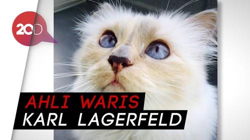 Choupette, Kucing Kesayangan Karl Lagerfeld yang Kaya Raya