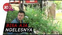 Aksi Pemotor Hindari Razia, dari Jongkok Hingga Pura-Pura Mancing