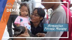 Komunitas Pecinta Musang, Demak