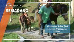 Menunggangi Kuda Berkeliling Kebun Kopi Banaran, Semarang