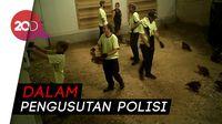 Sadis! Penyiksaan Ayam di Peternakan Australia Terekam Kamera