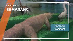 Museum Binatang Mangkang Semarang