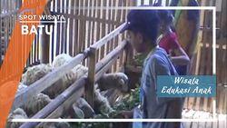 Wisata Edukasi Anak Di Batu Malang