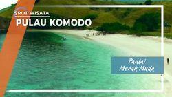 Pantai Merah Muda Manggarai Barat Pulau Komodo