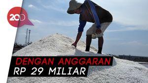 Pemerintah Mau Bikin Pabrik Garam Kapasitas 40 ribu ton/tahun