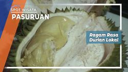 Durian Lokal Desa Warung Dowo Pasuruan