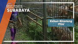Kebun Binatang Mini, Surabaya