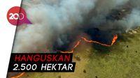 Cagar Warisan UNESCO di Meksiko Terbakar