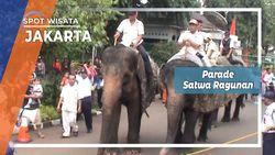 Eksotisme Binatang Taman Marga Satwa Ragunan Jakarta