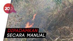 Sekitar 8 Ha Bukit Bentar Terbakar, Petugas Kesulitan Padamkan Api
