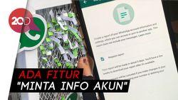 Yuk Cari Tahu Informasi Apa Saja yang Diambil WhatsApp dari Akunmu!