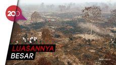 Jokowi Mencium Karhutla di Riau Terorganisasi