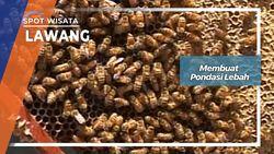 Membuat Sarang Lebah Lawang Jawa Timur