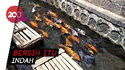 Wih! di Banyuwangi Saluran Irigasi Penuh Sampah Disulap Jadi Kolam Ikan