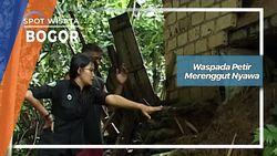 Waspada Petir Merenggut Nyawa, Bogor