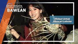 Melaut Untuk Mencari Lobster, Bawean