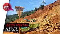 BKPM Patok Harga Nikel Dalam Negeri US$ 30 Per Metrik Ton