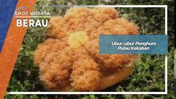 Ubur-ubur Penghuni Danau Kakaban Kepulauan Derawan Berau