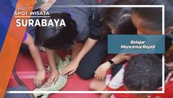 Belajar Mencintai Reptil Surabaya