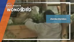 Domba Dombos, Wonosobo