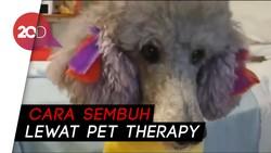 Anjing Penghibur yang Bikin Pasien Kembali Sehat