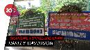 Copot Dirut Garuda, Karangan Bunga Penuhi Kementerian BUMN