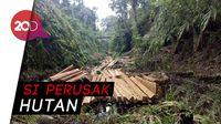 Jadi tersangka Ilegal Logging, Anggota DPRD Bolaang Diciduk