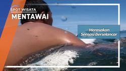 Mencari Ombak Terbaik di Kepulauan Mentawai Sumatera Barat