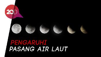 Gerhana Bulan Penumbra Terjadi 11 Januari di Indonesia
