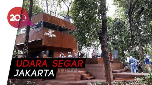 Ngopi di Tengah Suasana Hutan di Arborea Cafe