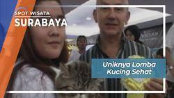 Lomba Kucing Sehat, Surabaya