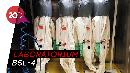 Dugaan Lain Munculnya Virus Corona, Kebocoran Laboratorium Wuhan?