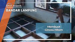 Cincau Hitam  Bandar Lampung