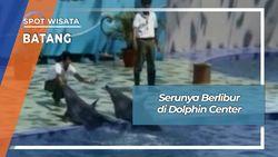 Berlibur Mengenal Satwa Di Dolphin Center Batang Jawa Tengah