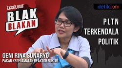 Tonton Blak-blakan Pakar Nuklir Batan: PLTN Terkendala Politik