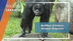 Berlibur Di Kebun Binatang Ragunan Jakarta Selatan