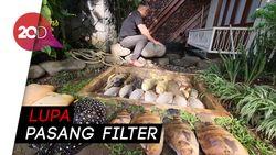 Karyawan Lalai, Ikan Seharga Ratusan Juta Milik Irfan Hakim Mati