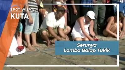 Serunya Bule Bali Berlomba Balap Tukik Pantai Kuta