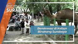 Berekreasi di Kebun Binatang Surabaya, Surabaya