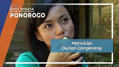Enak Nikmat Durian Cangkrang Telaga Ngebel Ponorogo