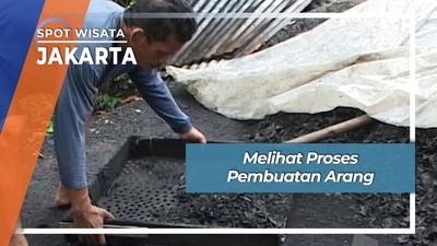 Melihat Proses Pembuatan Arang Jakarta