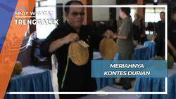 Kontes Durian, Trenggalek