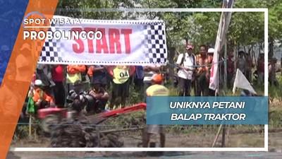 Lomba Unik Adu Cepat diatas Medan Berlumpur, Probolinggo