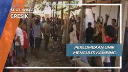 Lomba Unik Menguliti Kambing Desa Kedanyang Kebomas Gresik