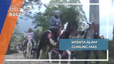 Wisata Berkuda Gunung Mas Puncak Bogor
