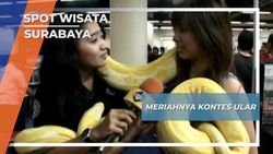 Meriahnya Kontes Ular, Surabaya
