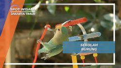 Sekolah Burung agar Pintar di Jakarta Timur